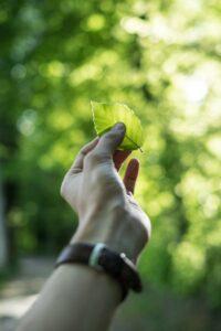 une en iso 14001 2015 gestion ambiental